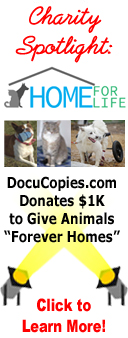 Charity spotlight - DocuCopies.com Donates $1K to Home For Life and Sponsors Three Animals